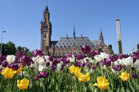 un: Flowers and Peace Palace aka UN International Court of Justice in The Hague, Holland