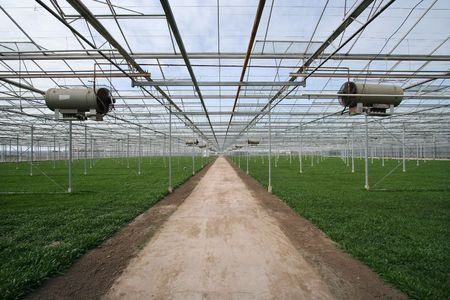 Large greenhouse with heaters photo