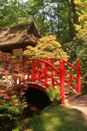 Red bridge in Japanese garden photo