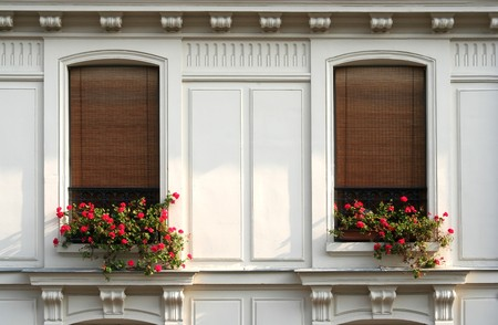 Two windows with flowers in a Paris apartment