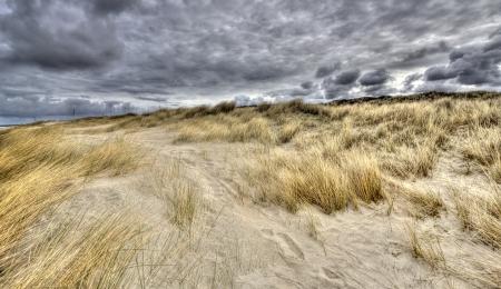 rainclouds: Dune and rainclouds on the Dutch coast