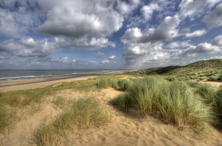 Dunes and beach along the Dutch coast near The Hague, Holland