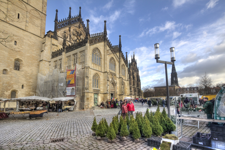 Munster, Germany - December 23, 2015: People look at christmas trees for sale in the market in front of the Munster Saint Pauls Dom in Munster, Germany on December 23, 2015 Editorial
