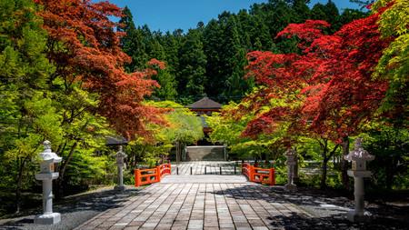 Colorful serene nature in Koyasan, Japan