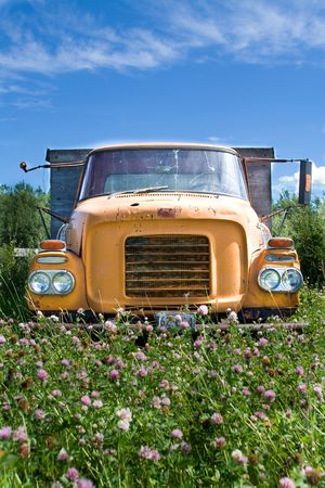 rusting: Photo of an old truck in a farmers field with flowers Stock Photo