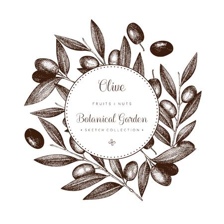 Olive branch wreath. Illustration