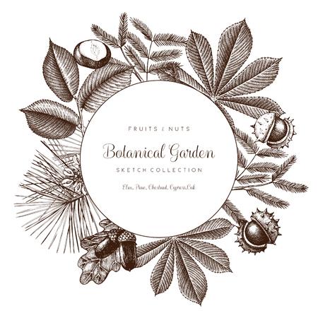 Vintage frame with botanical elements. Vettoriali