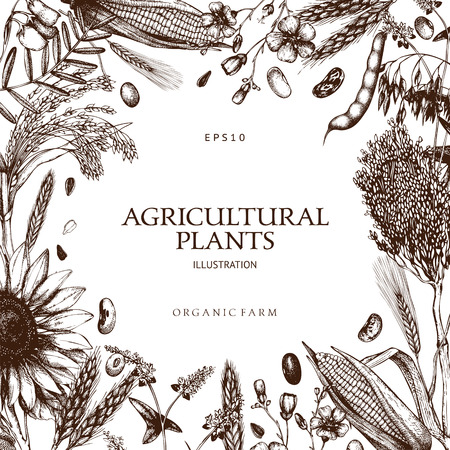 Farm fresh and organic plants template Vettoriali