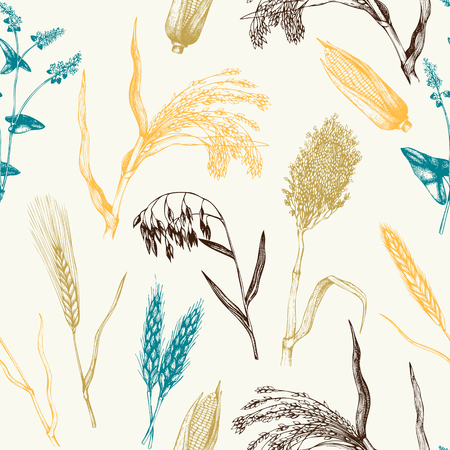 Vector pattern with hand drawn cereal crops Stock Illustratie