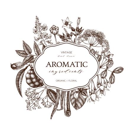 conception de plantes aromatiques et médicinales