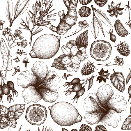 chamomile tea: Vector tea background Illustration