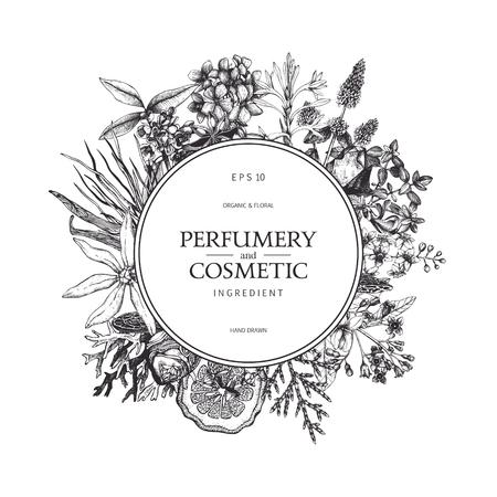 Ensemble d'illustrations en parfumerie et cosmétiques Banque d'images - 77035381