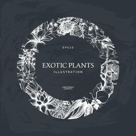 Exotic plants background. Çizim