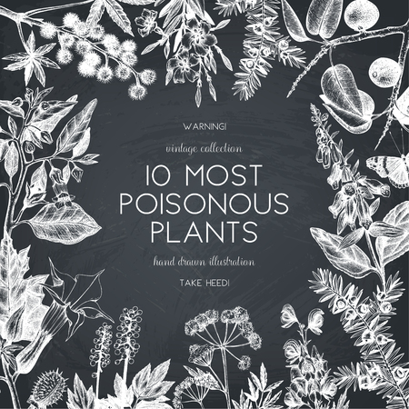 Hand drawn poisonous plants design