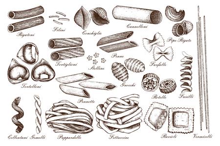 Vector collection of traditional Italian pasta. Hand drawn food sketch set. Vintage illustration for cafe or restaurant design. Ilustração