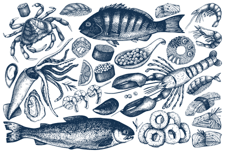 Hand drawn Seafood illustrations set.