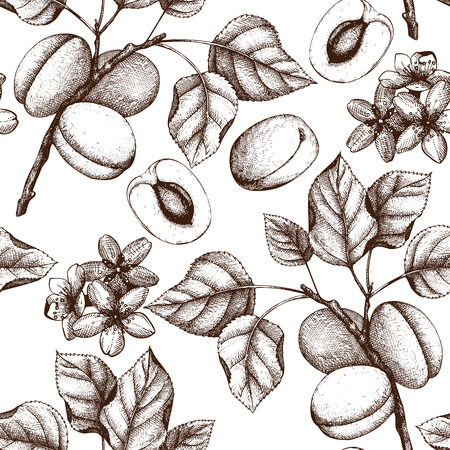 Vector apricot vintage background Vettoriali