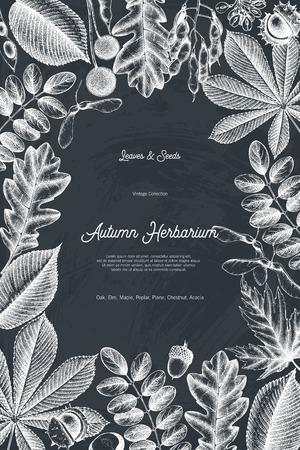 Tarjeta de diseño de otoño en la pizarra