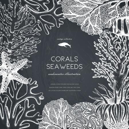 Vector frame met hand getrokken zee koralen, vissen, sterren schets. Uitstekende achtergrond met onderwater natuurlijke elementen. Decoratieve sealifeillustratie op bord. Bruiloft ontwerp.