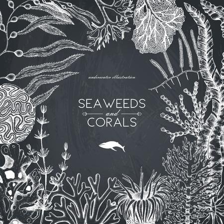 Een vector frame met hand getrokken zee koralen, vissen, sterren schets. Uitstekende achtergrond met onderwater natuurlijke elementen. Decoratieve sealifeillustratie op bord. Bruiloft ontwerp. Stock Illustratie