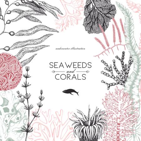 Een vector frame met hand getrokken zee koralen, vissen, sterren schets. Uitstekende achtergrond met onderwater natuurlijke elementen. Decoratieve sealifeillustratie die op wit wordt geïsoleerd. Bruiloft ontwerp.