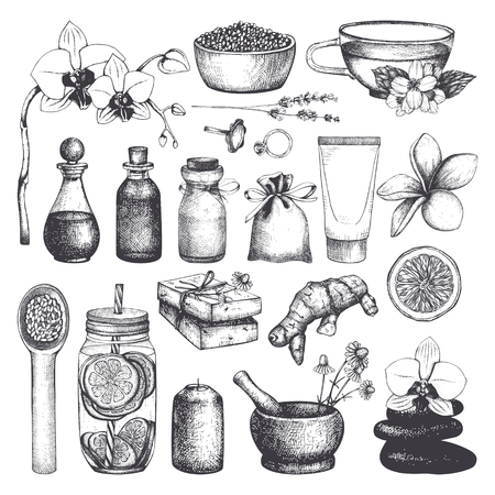 Vintage fset of  hand drawn SPA and Beauty illustrations. Cosmetics and aromatic ingredients collection. Vector healthy life elements. Illustration