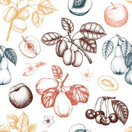 Vintage background with ripe fruits and berries  - apple, pear, cherry, peach, apricot trees. Hand drawn harvest illustrations.  Summer or autumn design. Seamless pattern Banque d'images - 122079289