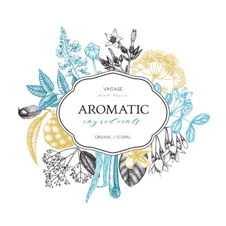 Hand drawn perfumery and cosmetics ingredients