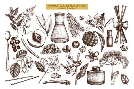 Ensemble d'ingrédients de parfumerie et de cosmétiques dessinés à la main vintage.