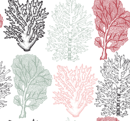 Seamless pattern with sea fans corals