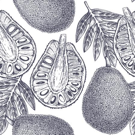 Breadfruit Tropical hand drawn