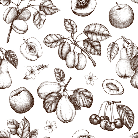 Vintage background with ripe fruits and berries  - apple, pear, cherry, peach, apricot trees. Hand drawn harvest illustrations.  Summer or autumn design. Seamless pattern Illustration