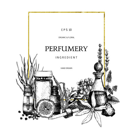 Vintage template. Ink hand drawn design with aromatic plants and fruits.