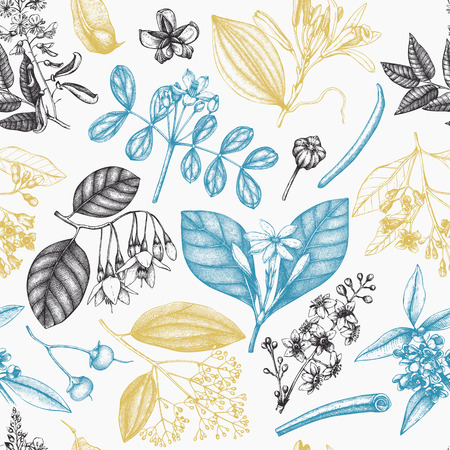 Vector background withand drawn Perfumery and cosmetics ingredients illustration. Aromatic and medicinal plant seamless pattern. . Illustration