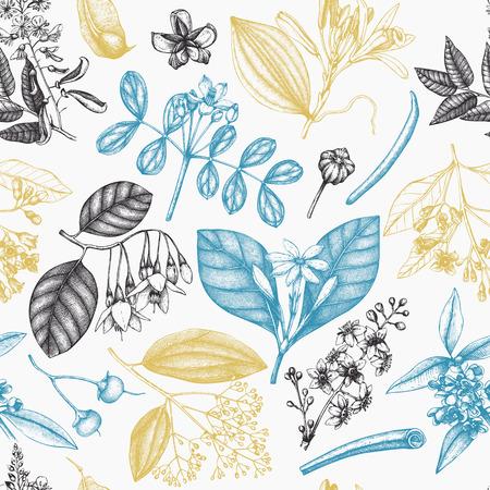 Vektorhintergrund Withand gezeichnete Parfümerie- und Kosmetikbestandteilillustration. Nahtloses Muster der aromatischen und medizinischen Pflanze. .