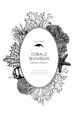Vector frame with hand drawn black corals, fish, stars sketch. Illustration