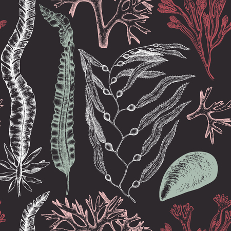 Seamless pattern with seaweeds, corals, shells sketch.