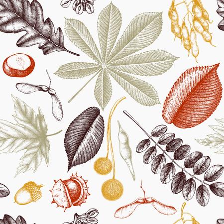 Modèle sans couture avec des feuilles et des graines dessinées à la main