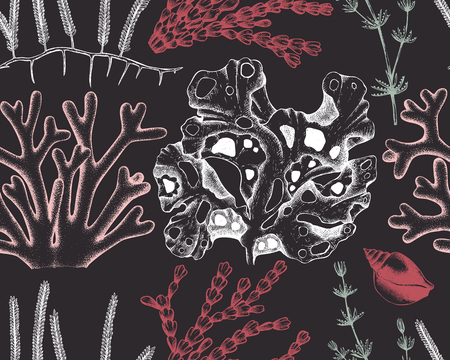 Seamless pattern with seaweeds, corals, shells sketch. 일러스트