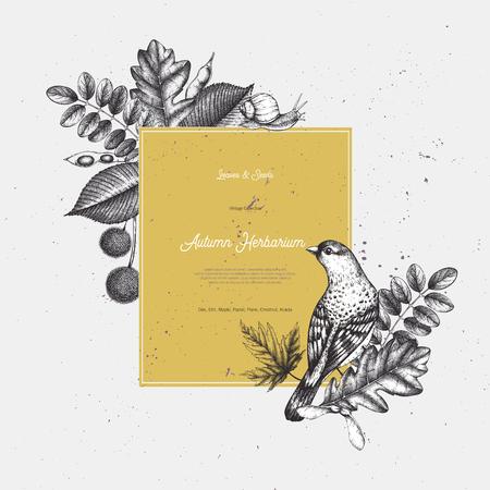 Vintage card design with bird. Imagens - 122886785