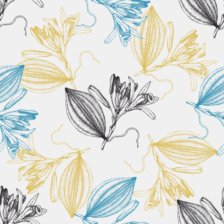 Vector background with hand drawn Vanilla illustration. Aromatic and medicinal plant seamless pattern. Perfumery and cosmetics ingredients.