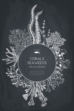 Vector card design with hand drawn sea corals, fish, stars sketch.