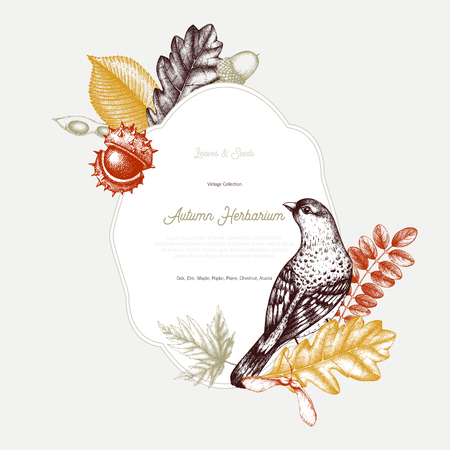Vintage card design with bird. Hand drawn leaves and seeds