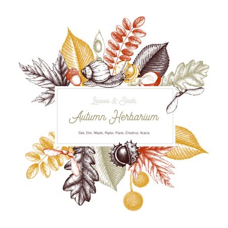 Diseño de tarjeta vintage Hojas y semillas dibujadas a mano