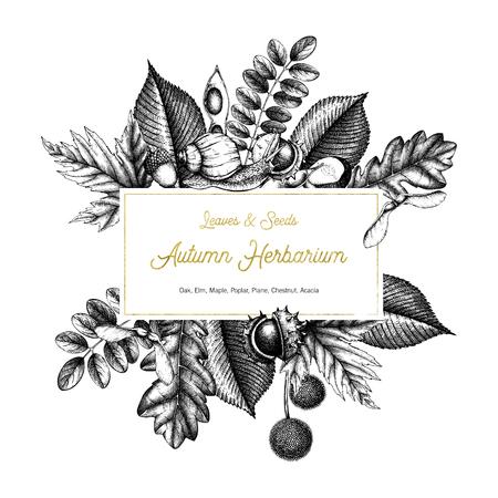 Diseño de tarjeta vintage con caracol. Semillas y hojas dibujadas a mano Ilustración de vector