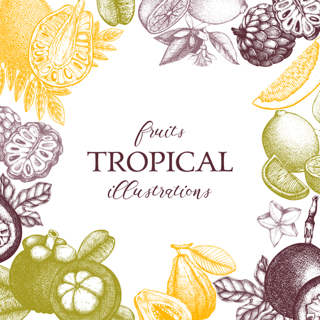 Vector card design with hand drawn tropical fruits
