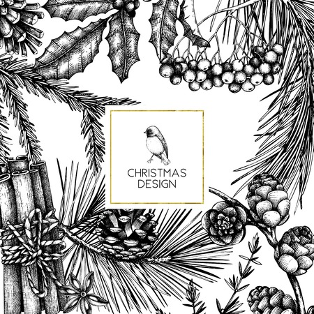 Vector frame with hand drawn conifers, holly berries, mistletoe, cones, mountain ash. Holiday decor elements. Vintage Christmas or New Year card design. Winter template Reklamní fotografie - 122675428
