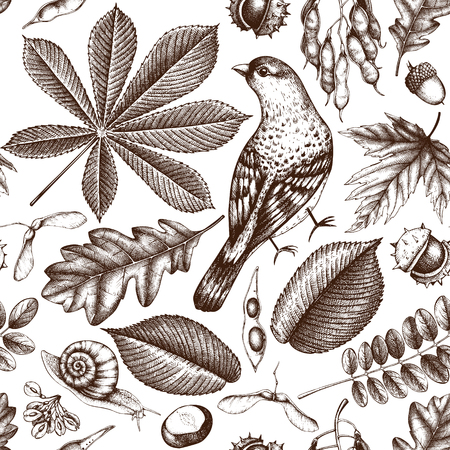 Seamless pattern with hand drawn leaves and seeds sketch. Vector autumn background. Vintage bird illustration.