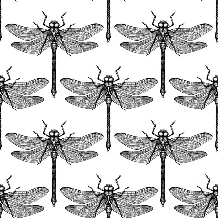 Seamless pattern with hand drawn black dargonfly. Vector insects sketch collection. Vinatge spring background.