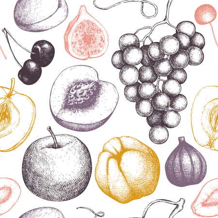 Vintage fruits and berries background - fig, apple, pear, peach, apricot, persimmon, pomegranate, quince, grapes. Hand drawn harvest sketch. Summer or autumn seamless pattern.